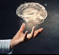 Corso: Neuropsicologia clinica integrata nell'adulto e nell'anziano - Milano